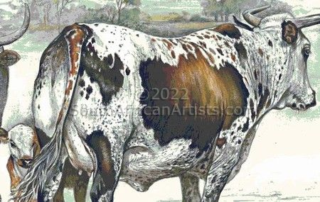 """Tri-Color Nguni Cow and Calf"""
