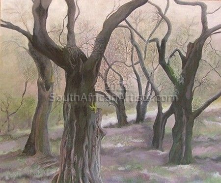 """Ancient Olive Tree Forest"""