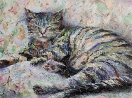 """Sleeping cat"""