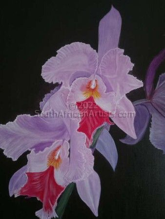 """Orchid"""