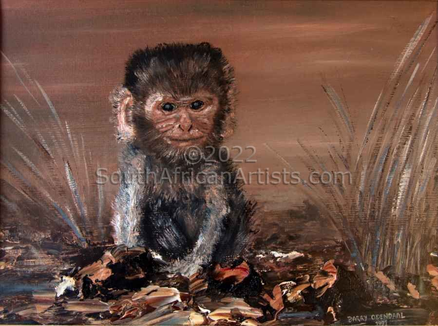 """Juvenile Monkey (Out of Africa)"""