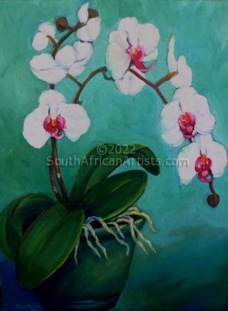 """White Orchids - Turquoise Series"""