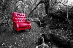 """Forest 2, My Father's Chair"""