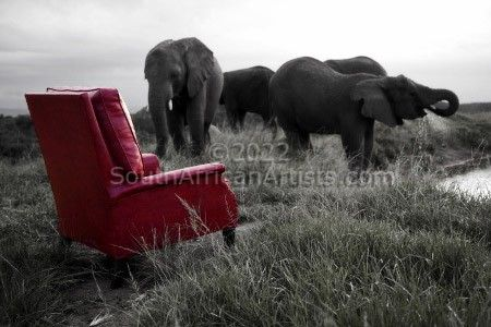 """Elephants, My Father's Chair"""