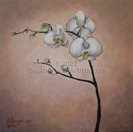 """Orchid - White"""