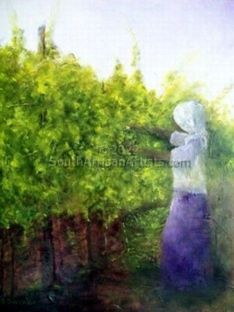 """Harvesting our Grapes"""