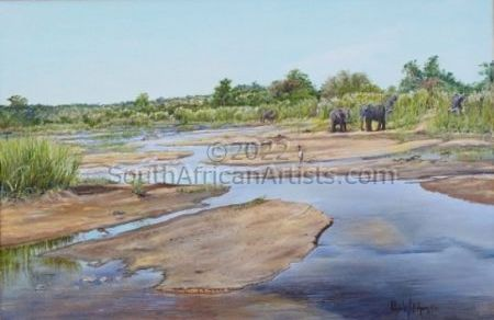 """Elephants on Lower Sabie River. KNP"""
