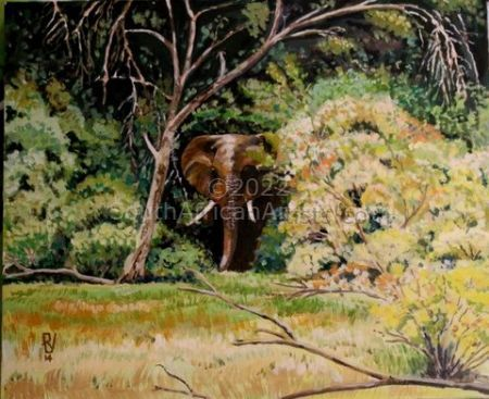 """Elephant in Riverine Forest"""