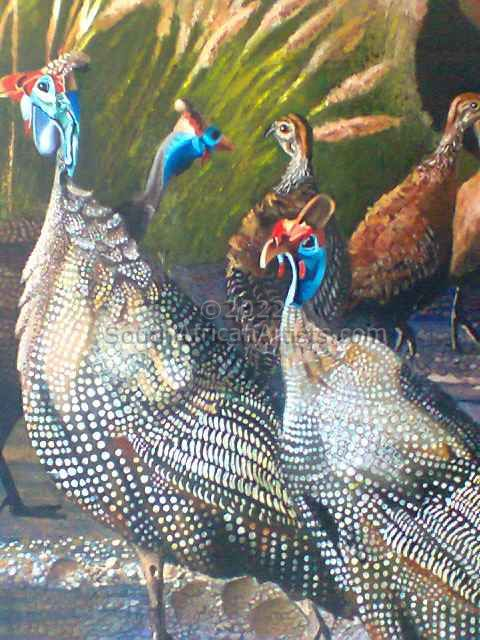 """Domesticated Guineafowl"""