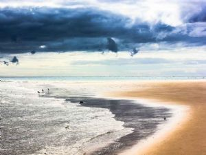 """Early Morning on Margarique Island, Mozambique"""