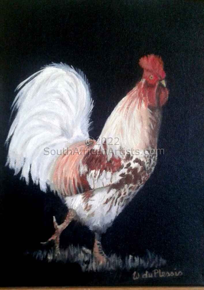 """Rooster #459"""