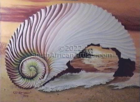 """Shell View"""