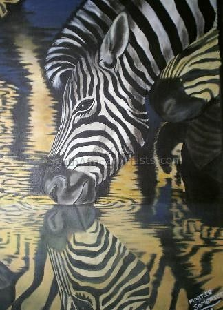 """Zebra Reflection"""