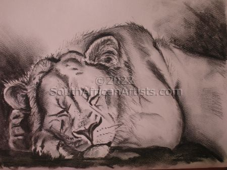 """Lion Dozing"""