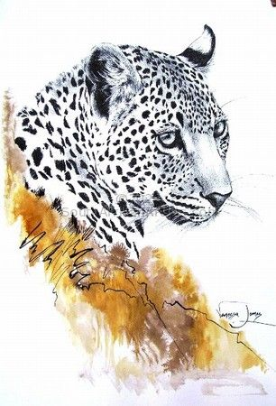 """Leopard Portrait (female)"""