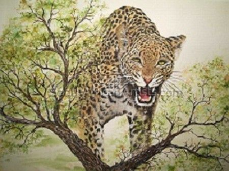 """Angered Leopard"""