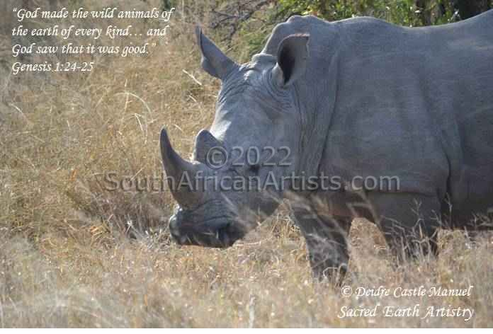 """Kruger National Park Rhino 03 with Scripture"""