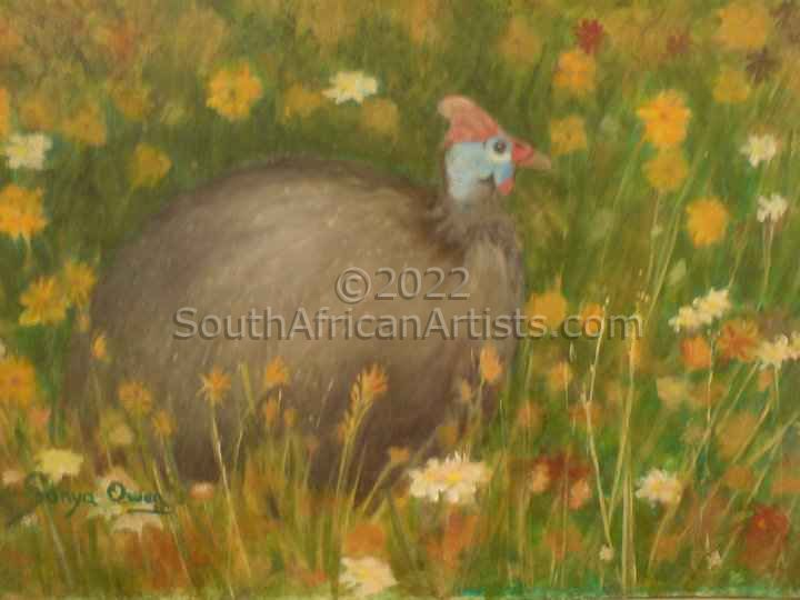"""Guineafowl Surrounded by Colourful Daisies"""